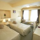 Grandpark Hotel EX Kisarazu - Twin Room