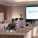Radisson Hotel Narita - Guest Salon