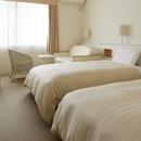 Mitsui Garden Hotel Prana Bay Tokyo - Standard