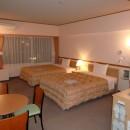 Toyoko Inn Narita Kuko - Twin Room