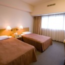 Narita View Hotel - Twin Room1