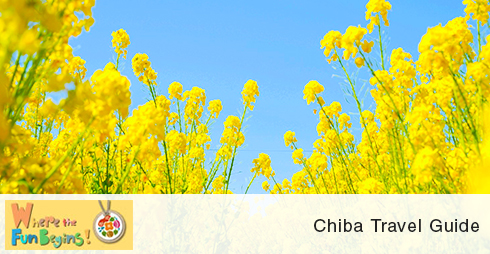 Chiba Travel Guide